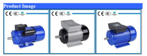YL series double-value capacitor motor pictures & photos
