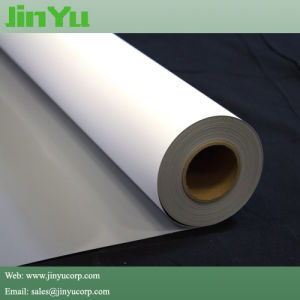 6mil Grey Backed Pet Roll up Display Film pictures & photos
