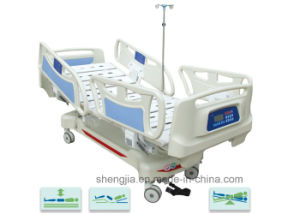 Sjb501ec High-Level Five-Function Electric Vertical Travelling Bed with Weight Readings