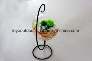 Christmas Decoration Silk Flowers Preserved Natural Roses pictures & photos