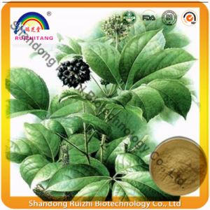 Factory Supply High Quality Siberian Ginseng P. E. pictures & photos