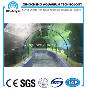 Customized Aquarium Tunnel Acrylic Material Shark Tank Project pictures & photos