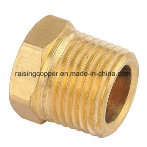 Brass Plug with NPT Thread pictures & photos
