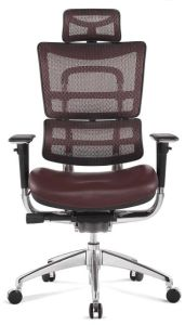 Best Leather Ergonomic Chair for Boss pictures & photos