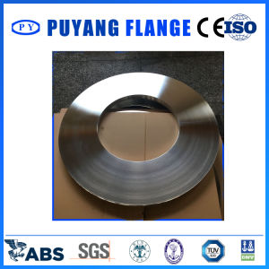 Stainless Steel Forged Plate Ring 1322*843*54 (PY0136) pictures & photos