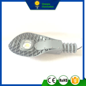 30W/50W High Quality LED Street Garden Light pictures & photos