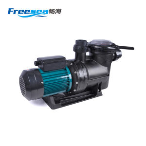50Hz Pool Water Filter Industry High Pressure Pump pictures & photos