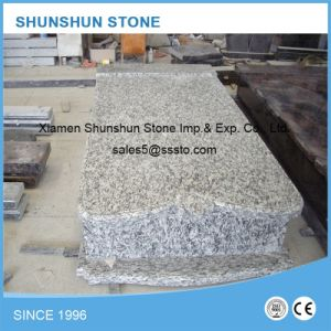 High Quality Eurapean Style Granite Monuments for Sale pictures & photos