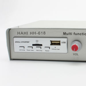 Multifunction 12V-48V Digital Audio Amplifier Hh-618 pictures & photos