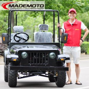 Adult Jeep 200cc Gy6 Engine with Auto Clutch pictures & photos