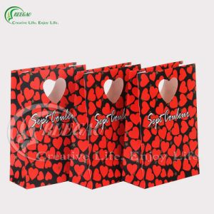 Beautiful Paper Bag for Gift (KG-PB009) pictures & photos