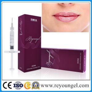 Sodium Hyaluronate Acid Injectable Gel Ha Dermal Filler pictures & photos