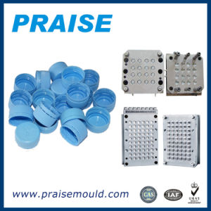 Quality Custom Highly Production Pet Bottle Cap Mould pictures & photos