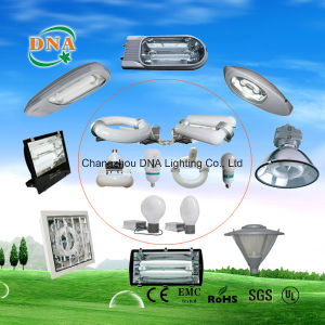 350W 400W 450W Induction Lamp Outdoor Street Light