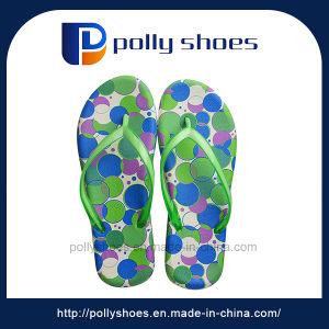 Green Open Toe Flip Flop Sandal pictures & photos
