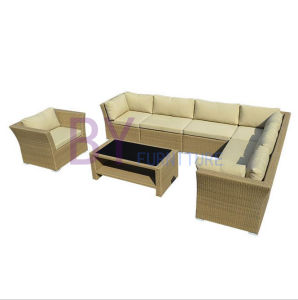 PE Rattan Sofa Leisure Garden Furniture pictures & photos