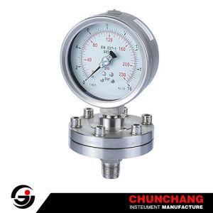 Series Typ Diaphragm Pressure Gauge pictures & photos