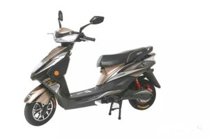 Hot Sale Motor 800watt Electric Motorbike Scooter Motorcycle (HD800-YY)