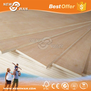 Bintangor & Poplar Packing Plywood, Packaging Plywood 18mm pictures & photos