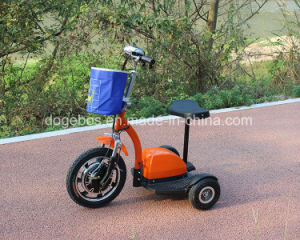250W Lithium Battery Electric Tricycle 3 Wheel Electric Trike pictures & photos