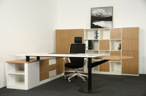 Stainless Steel Furniture Metal Base Executive Office Table (HX-AD815) pictures & photos