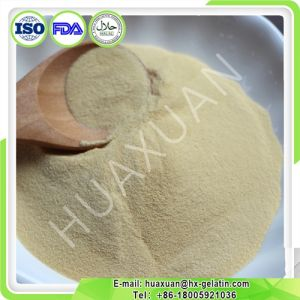 Cheap Price Top Quality Hydrolysate Chicken Collagen Type1 pictures & photos