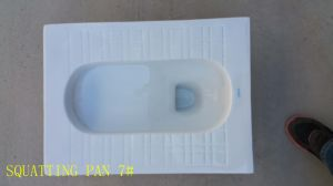 Sanitary Ware Wc Ceramic Water Closet Squatting Pans with Factory Price pictures & photos