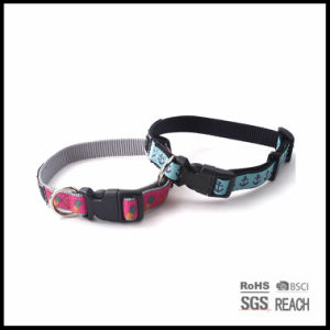 Personalised Best Fancy Nylon Pet Puppy Cat Dog Collars pictures & photos
