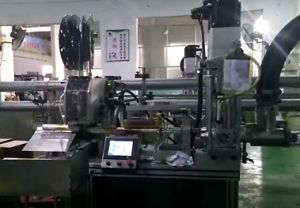 Full Automatically Filling and Sealing Machinery for Sausage Film Material pictures & photos