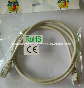 RJ45 Ftpcat5e /Computer Cable/Data Cable/Communication Cable/Connector pictures & photos