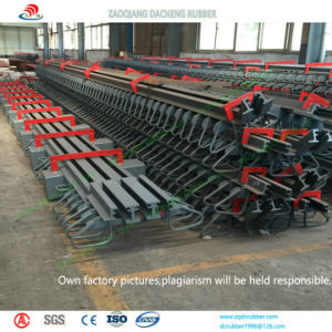 Bridge Project Use Steel Expansion Joint for Many Countries pictures & photos