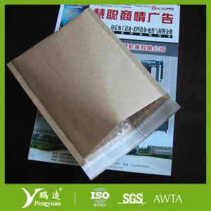 Brown Kraft Paper/Bubble Mailer for Beauty Products pictures & photos