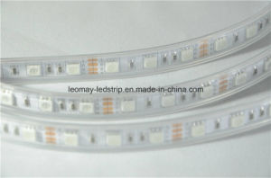 Customized Low Voltage LED Strip Light with Ce Certified pictures & photos