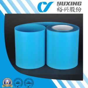 Polyester Film for Heddles (CY22B) pictures & photos