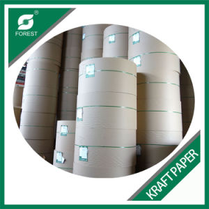 Cheap Virgin Kraft Liner Paper Made in China pictures & photos