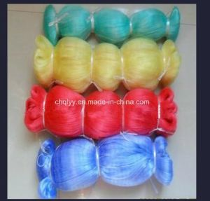 Nylon Colour Fishing Net for Ukrain Market with 75md/100md/200md pictures & photos