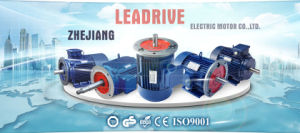 Y Series Three Phase Electric Motor pictures & photos