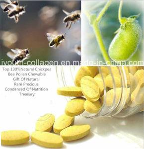 Top Pollen, 100%Natural Garbanzo Bee Pollen Chewable, No Antibiotics, No Heavy Metal, No Pesticide Residues, No Pathogenic Bacteria, Prolong Life, Health Food. pictures & photos