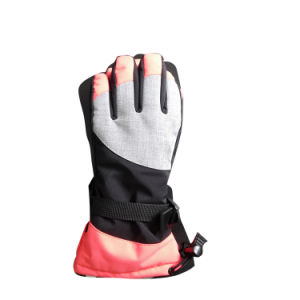 Outdoor Sports Gloves, Fg003