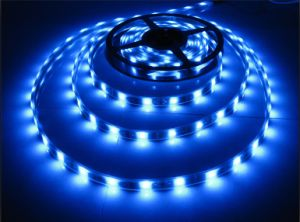 12V/24V DC SMD3528 LED Strip Light LED Rope Light pictures & photos