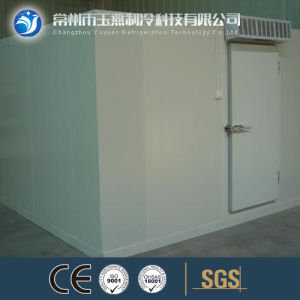 Customer Assembling Freezer Room Refrigerator Room for Food pictures & photos