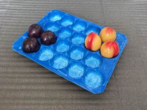 Popular Wholes Netherlands Different Cavity 39X59cm&29X49cm PP Plastic Fruit Cell Tray for Apple&Pear Fruit Packaging pictures & photos
