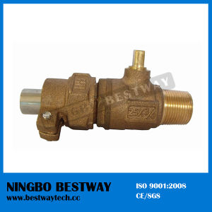 Bronze Stop Valve Manufacturer (BW-Q13) pictures & photos