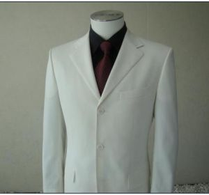 Men′s Suit and Suit Casual Business Suit pictures & photos