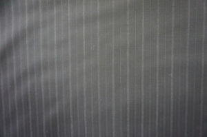 Wool Fabric for Suit 100%Wool Streak pictures & photos