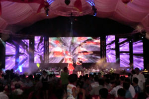 P10 Full Color Soft/Flexible Video LED Display for Outdoor/Indoor pictures & photos