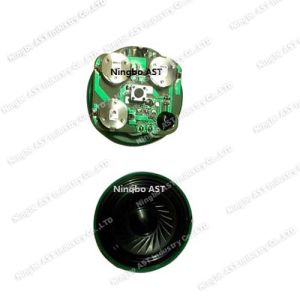 Plush Toy Sound Module, Push Button Voice Module pictures & photos