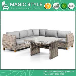 Rattan Combination Sofa Set Wicker Sofa Set Modern Sofa (Magic Style) pictures & photos
