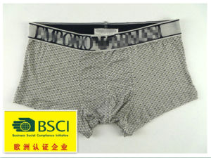 2015 Hot Product Underwear for Men Boxers 377 pictures & photos