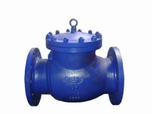 DIN Standard Swing Check Valve (GH44H) pictures & photos